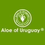 aloe-of-uruguay